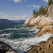 Rugged coastline — Stock Photo