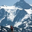 Royalty-Free Stock Photo: Snowshoer and his dog and Mt. Shuksan