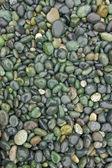 Strand steentjes — Stockfoto