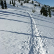 Snowy Mountain Path — Stock Photo