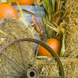 Stock Photo: Fall harvest display
