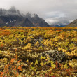 Tombstone Pass Yukon — Stock Photo #1162363