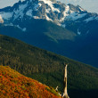 Stock Photo: Autumn in Northern Washington