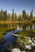 Laughington Lake in autumn — Stock Photo