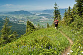 Alpine meadow hiker — Stock Photo