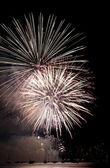 光花火のバンクーバー祭 — ストック写真