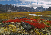 Tombstone Pass Yukon Territory — Stock Photo