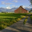 Traditional dairy barn - Photo