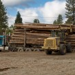 Logging truck being unloaded — Stock Photo
