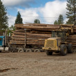 Stock Photo: Logging truck being unloaded