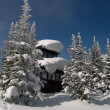 Stock Photo: Old winter forest fire lookout