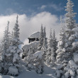 Winter at a forest fire lookout — Stock Photo