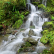 Stock Photo: Pacific Northwest mossy waterfall