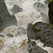 Stock Photo: Raging Torrent