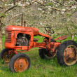 Antique spring orchard tractor — Stock Photo