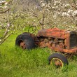 Stock Photo: Antique spring orchard tractor