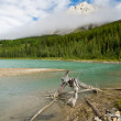 Wilderness Lake — Stock Photo