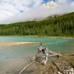 Wilderness Lake — Stock Photo