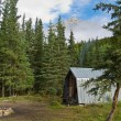 Forest Ranger Cabin — Stock Photo