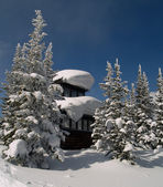 Old winter forest fire lookout — Stock Photo