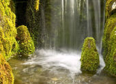 Waterfall and mossy rocks — Stock Photo