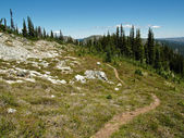 Winding Alpine Trail — Stock Photo
