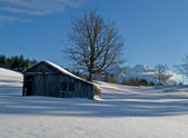 Rural barn and pasture in winter — Stock Photo