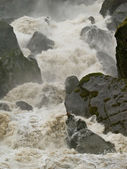 Raging Torrent — Stock Photo