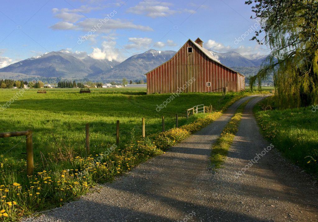 tradycyjne stodo