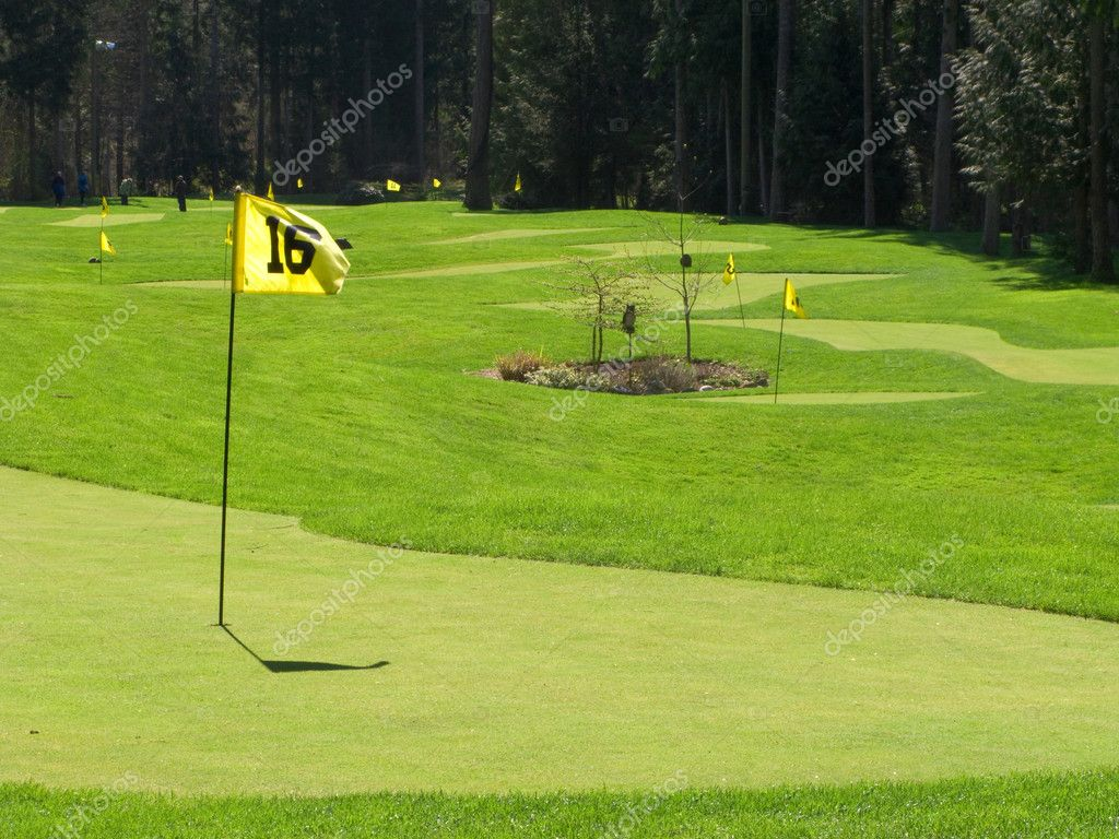 Golf greens and pins are part of this golf putting range — Lizenzfreies Foto #1268444