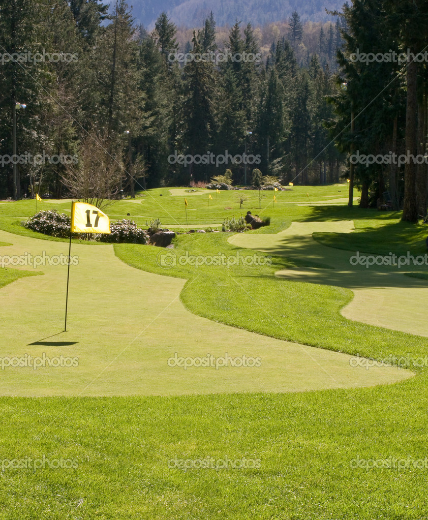 A golf green and pin in a putting range — Stock Photo #1268446