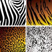 Animal skin variation — Stock Vector