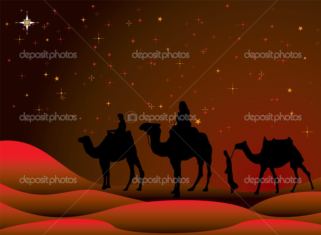 Traditional christmas scene with camels and a starry sky — Stock Vector #1115542