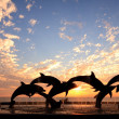 Dolphin statue in front of sunset - Stock Photo