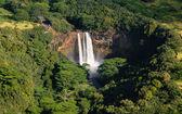 Wailua Falls near Lihue in Kauai — Stock Photo