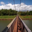 Hanapepe Swinging Bridge in Kauai — Stock Photo