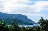 Na Pali coastline framed by trees — Stock Photo