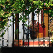Ornate iron gates with patio — Stock Photo