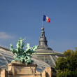 Grand Palais in Paris flying French flag — Stock Photo #1148498