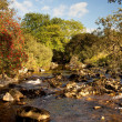 River flowing in welsh valley — Stock Photo