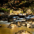 Stock Photo: Peat laden river in secluded Welsh Valle