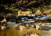 Peat laden river in secluded Welsh Valle — Stock Photo