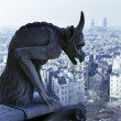 Gargoyle overlooking Paris - Stock Photo
