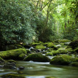 Peaceful river flowing over rocks — Stock Photo #1175453