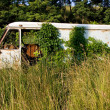 Royalty-Free Stock Photo: Rusty van in deep grass