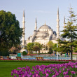 Royalty-Free Stock Photo: Blue Mosque 2