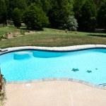 Backyard Pool 2 — Stock Photo #1175639
