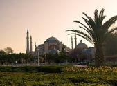 Blue Mosque at sunrise — Stock Photo