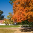 Stock Photo: Old white house framed by autumn fall le