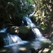 Waterfall in forest glade — Stock Photo #1275493